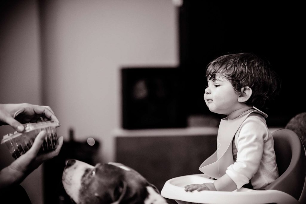 Little boy and family dog